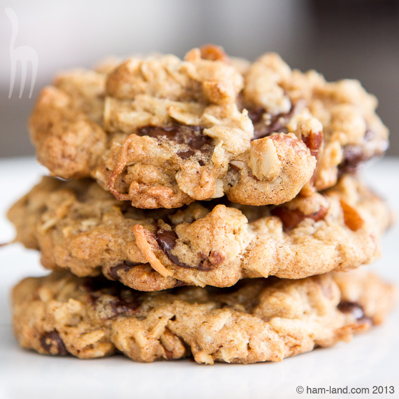 Awesome Oatmeal Chocolate Chip Cookie Recipe — Dishmaps